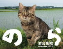 2022猫カレンダー のら [ 岩合 光昭 ]