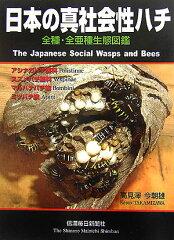 日本の真社会性ハチ