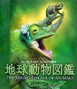 地球動物図鑑 哺乳類・鳥類・爬虫類・両生類・魚類・無脊椎動物 [ フレッド・クック ]