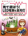 【送料無料】光で遊ぼう! LED電飾&蛍光灯