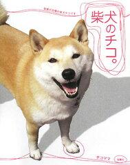【送料無料】柴犬のチコ。