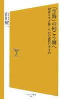 山川健一『「空海」の向こう側へ』表紙