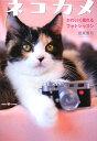 【送料無料】ネコカメ