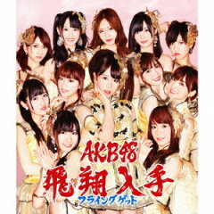 【送料無料】フライングゲット(通常盤Type-B CD+DVD) [ AKB48 ]