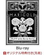 【楽天ブックス限定先着特典】TRUMP series Blu-ray Revival ミュージカル「マリーゴールド」 【Blu-ray】(クリアステッカー)