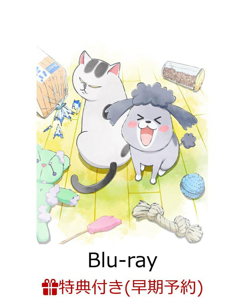 【早期予約特典+先着特典】犬と猫どっちも飼ってると毎日たのしい Blu-ray(初回限定生産)【Blu-ray】(ジャケットイラスト使用 しおりカード+猫さまヘアゴム)