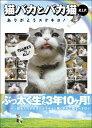 【予約】 猫バカとバカ猫 R.I.P