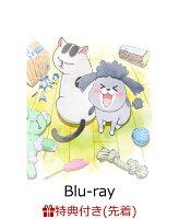 【先着特典】犬と猫どっちも飼ってると毎日たのしい Blu-ray(初回限定生産)【Blu-ray】(猫さまヘアゴム)