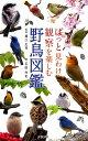 ぱっと見わけ観察を楽しむ野鳥図鑑 [ 石田光史 ]