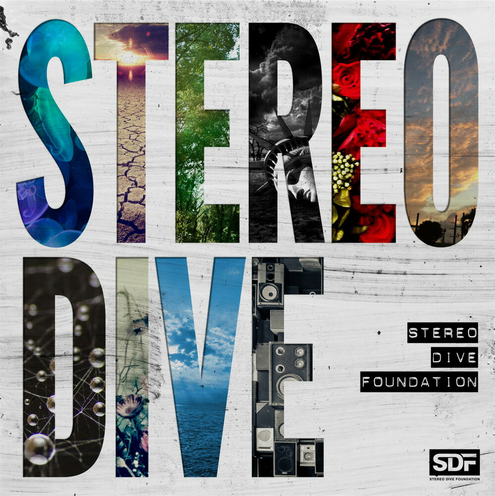 STEREO DIVE画像