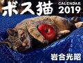 ボス猫カレンダー(2019)