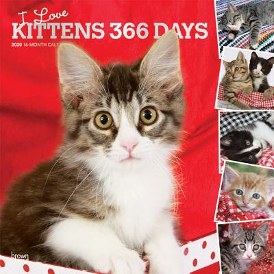 Kittens, I Love, 366 Days, 2020 Square Foil画像