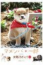 【送料無料】マメシバ一郎from幼獣マメシバ[DVD]