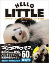 アドベンチャーワールドで生まれたあかちゃんパンダの奇跡 HELLO LITTLE 〈DVD付〉 [