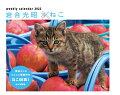 岩合光昭×ねこカレンダー(2022)