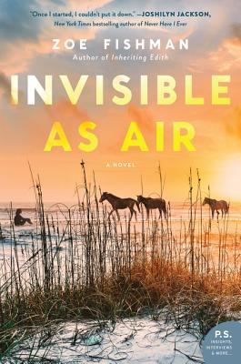 Invisible as Air画像