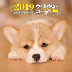 2019年大判カレンダー ウェルシュ・コーギー
