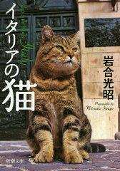 イタリアの猫 [ 岩合光昭 ]