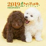 2019年大判カレンダー トイ・プードル