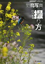 【送料無料】野鳥写真の撮り方