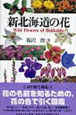新北海道の花 [ 梅沢俊 ]