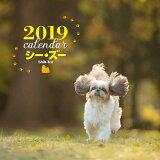 2019年大判カレンダー シー・ズー