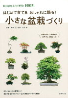 【バーゲン本】小さな盆栽づくりーはじめて育てるおしゃれに飾る!