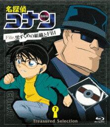 名探偵コナン Treasured Selection File.黒ずくめの組織とFBI 7