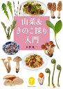 山菜&きのこ採り入門 (ヤマケイ文庫) [ 大作晃一 ]