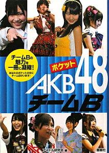 【送料無料】ポケットAKB48チームB