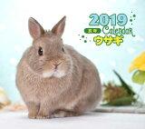 2019年ミニカレンダー ウサギ