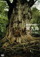 世界自然遺産 屋久島 〜四季・生命の輝き〜