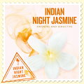 SCENTS OF THE WORLD〜 THE BODY SHOP INDIAN NIGHT JASMINE