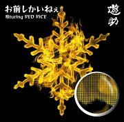 <b>ポイント10倍</b>お前しかいねぇ 遊turing RED RICE (from湘南乃風)
