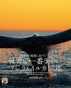 世界で一番美しい クジラ&イルカ図鑑 絶景・秘境に息づく (ネイチャー・ミュージアム) [ 水口 博也 ]