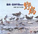【送料無料】盤洲・富津干潟周辺の野鳥