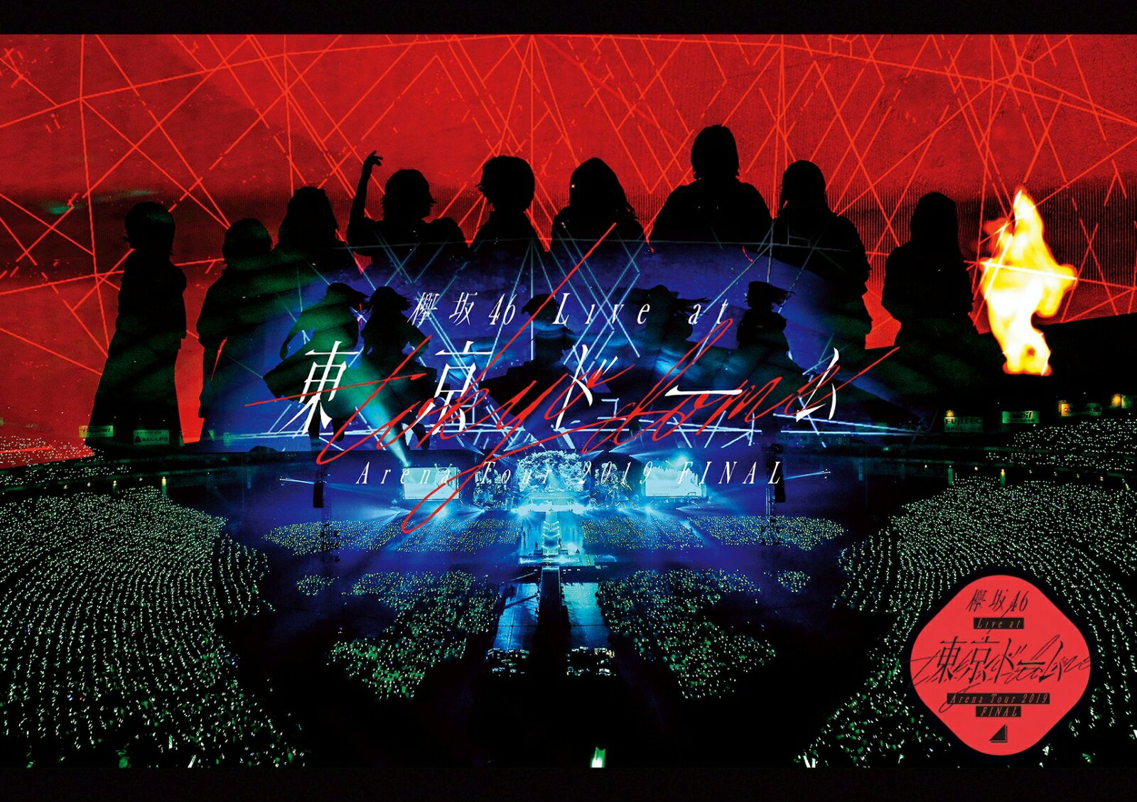 欅坂46 LIVE at 東京ドーム ~ARENA TOUR 2019 FINAL~(通常盤)【Blu-ray】