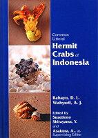 Common littoral hermit crabs of Indonesi