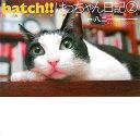 Hatch!!(2)