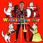 Walking on Air [ 田中宏史 ]