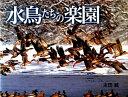 【送料無料】水鳥たちの楽園