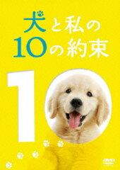 【楽天ブックスならいつでも送料無料】犬と私の10の約束 プレミアム・エディション [ 田中麗奈 ]