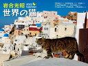 2022 岩合光昭 世界の猫カレンダー [ 岩合光昭 ]