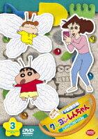 クレヨンしんちゃん TV版傑作選 第13期シリーズ 3 寝ている間にアートだゾ