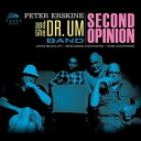 【輸入盤】Second Opinion [ Peter Erskine ]