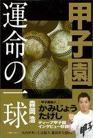 【バーゲン本】甲子園運命の一球