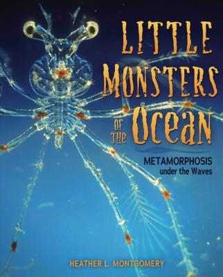 Little Monsters of the Ocean: Metamorphosis Under the Waves画像