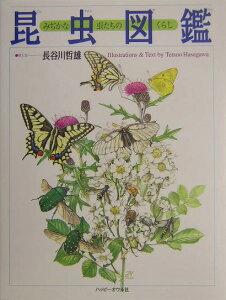 【送料無料】昆虫図鑑