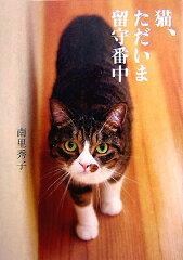 【送料無料】猫、ただいま留守番中 [ 南里秀子 ]