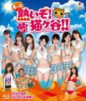 もっと熱いぞ!猫ヶ谷!!Blu-ray-BOX1【Blu-ray】 [ ミスマガジン2011 ]